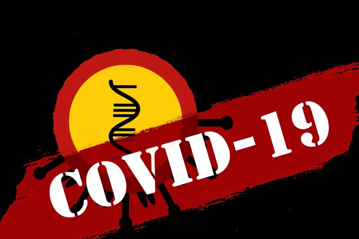 covid-19-4855688_1920