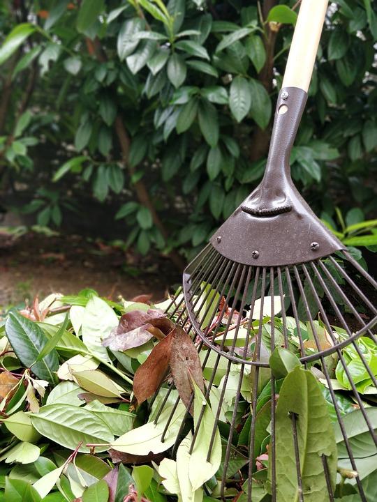gardening-3435892_960_720